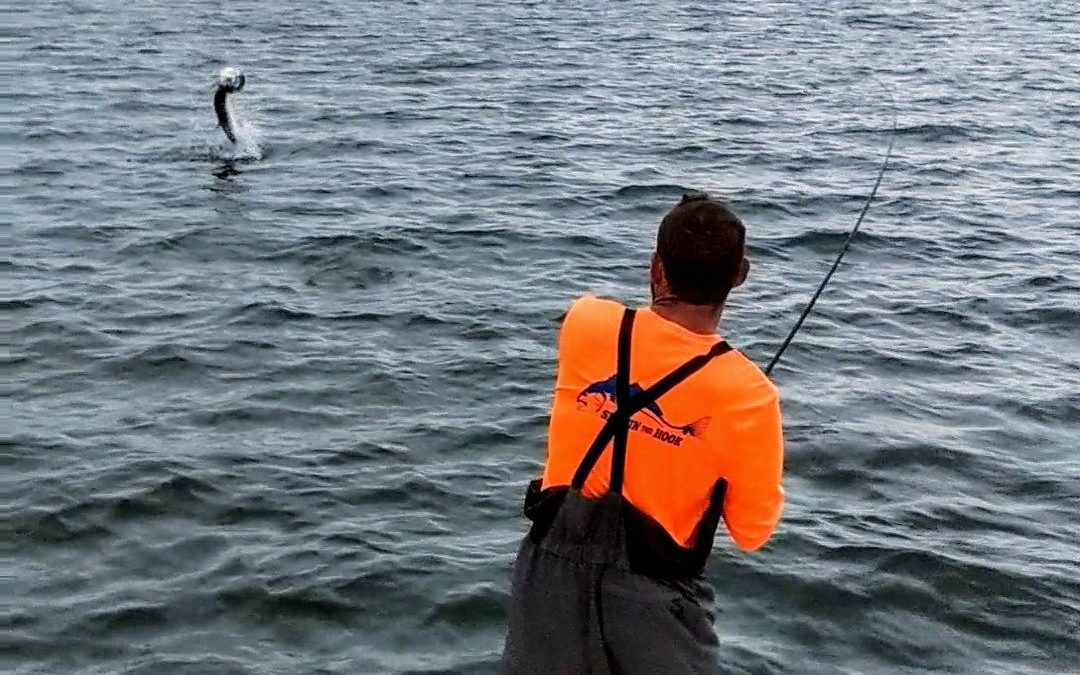 Seriously!!  Fishing shouldn't be this Good.
